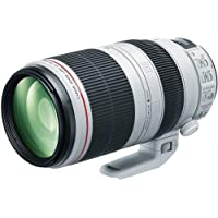 Canon EF 100-400mm f/4.5-5.6L IS II USM Lens International Version (No warranty)