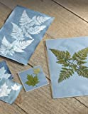 "4"" x 4"" Sunprint Kit"