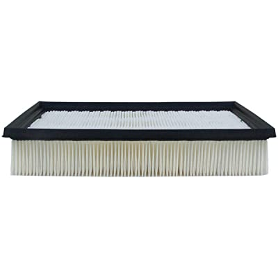 Luber-finer AF4066 Heavy Duty Air Filter: Automotive