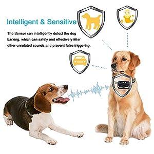 [Newest 2019]Dog Bark Collar-5 Adjustable Sensitivity and Intensity Levels-Dual Anti-Barking Modes-Rechargeable/Rainproof/Reflective -No Barking Control Anti Bark Collar for Small Medium Large Dog