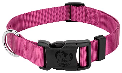 Image of Country Brook Petz | Vibrant 21 Color Selection | Deluxe Nylon Dog Collar (Rose, Extra Large, 1 Inch Wide)