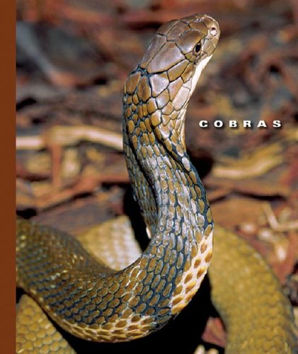 Cobras (The World of Reptiles) ebook