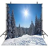 10x10FT Photography Backdrops Winter Trees Vinyl Photo Backgrounds Snow Photographic Backgrounds Computer Printed Backgrounds M6315