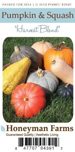 Honeyman Farms 4391 Pumpkin & Squash Blend Seed Packet