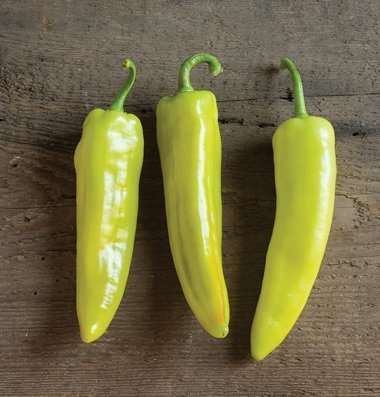 David's Garden Seeds Pepper Hot Lightning D3637PEP (Yellow) 50 Hybrid Seeds