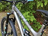 All Mountain Style AMSFG2CLSV Honeycomb High Impact Frame Guard Extra - Protects Your Bike from Scratches and dings, Clear/Silver