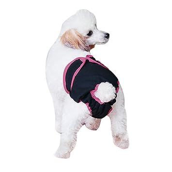 BXT hembra perro Transpirable Higiene pañal pantalones reutilizable. Seca rápidamente y sanitaria orina temporada de