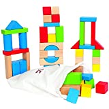 Hape Maple Wood Kid's Builidng Blocks in Assorted Shapes and Size