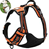 OLizee™ New Front Range No Pull Dog Harness Outdoor Adventure 3M Reflective Pet Vest with Handle Adjustable Protective Nylon Walking Pet Harness Variety of Sizes and Colors,Orange XL