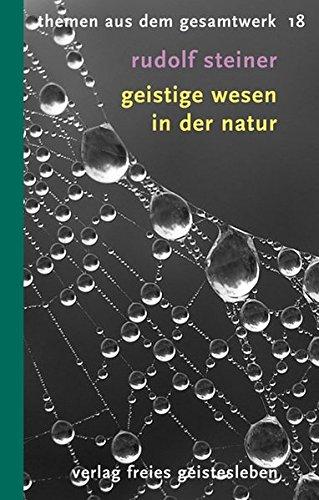 Geistige Wesen in der Natur: 12 Vorträge (Rudolf-Steiner-Themen-Taschenbücher)
