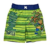 Teenage Mutant Ninja Turtles Boys Swim Trunks Shorts (2T)