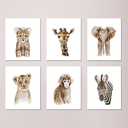 Safari Nursery Print Set of 6 Prints, Wildlife Portraits, Jungle Baby Animal Prints: Lion, Giraffe, Elephant, Zebra, Monkey, Cheetah - Different Sizes - Shipping Options International Usps