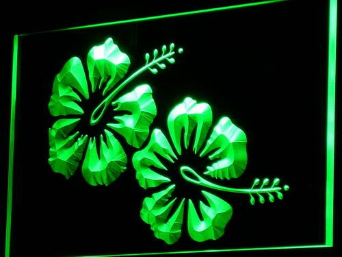 ADV PRO i757-g Hibiscus Flower Hawaii Beer Bar Neon Light Sign by AdvPro Sign