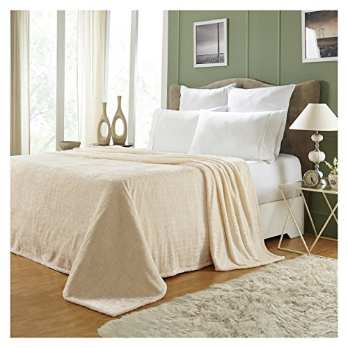 (Superior Quality All-Season, Plush, Silky Soft, Fleece Blankets and Throws, Ivory, Twin)