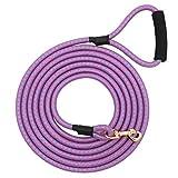 best Nylon Dog Leash