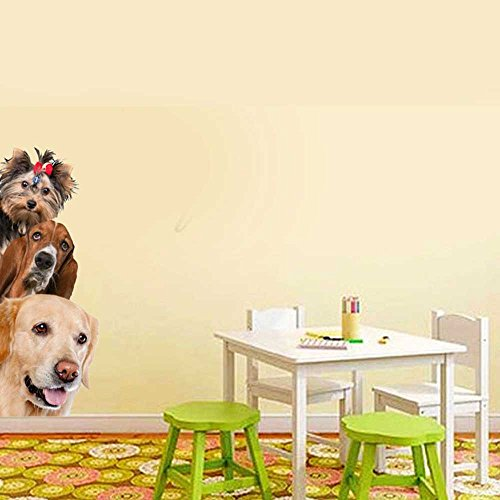 best ZCHING 3D Removable Mural Stickers Wall Stickers Decal Wall ...