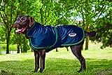 Cheap Weatherbeeta 600D Deluxe Dog Coat Blue/Evergreen 24″