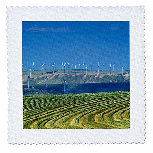 (3dRose qs_96637_2 Washington, Walla Walla. Farm Wind Turbines-US48 RDU0188-Richard Duval-Quilt Square, 6 by 6-Inch)