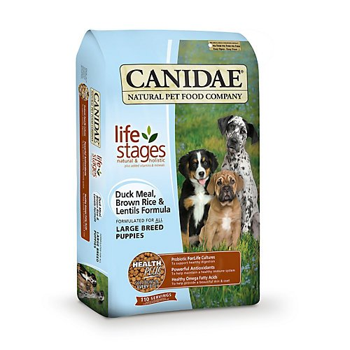 CANIDAE 404170 Large Breed Puppy Duck and Lentils, 15-Pound, My Pet Supplies