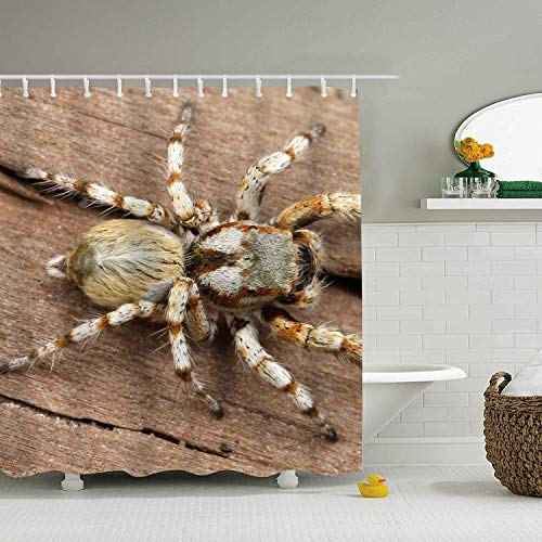 WANL Waterproof Mold/Mildew Resistant Animal Jumping Spider Arachnid Shower Curtain for Bathroom Showers and Bathtubs - No Odor, Chlorine Free