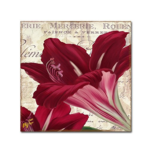 - Amaryllis by Color Bakery, 14x14-Inch Canvas Wall Art