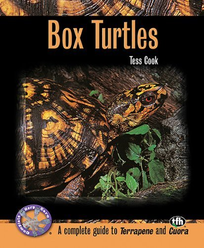 2006 Turtle - Box Turtles (Complete Herp Care) by Tess Cook (2006) Paperback