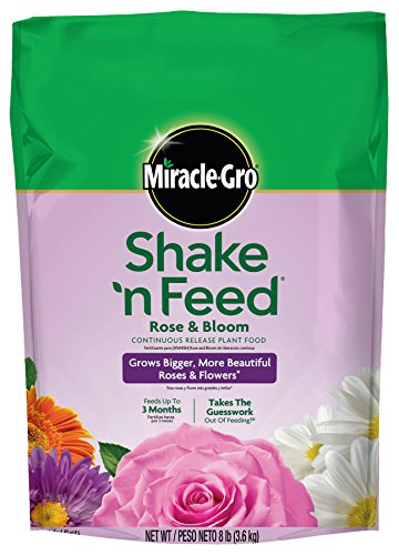miracle-gro-shake-n-feed-continuous-release-rose-and-bloom-plant-food-8-pound-slow-release-plant-fer