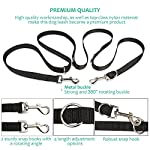 oneisall Hands Free Dog Leash,Multifunctional Dog Training Leads,8ft Nylon Double Leash for Puppy,Small & Large Dogs 10