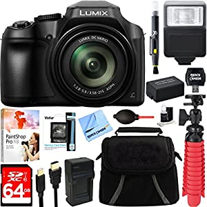 Panasonic DC-FZ80K 4K 18.1MP Point & Shoot Digital Camera with 20-1200mm Lens + 64GB Accessory Bundle
