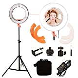 Mettle 12 Inch Brand Design Beauty LED Ring Lights,Makeup Lights, Photography Lights,Video Lights,Including Tripod and Mirror