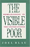 The Visible Poor, Joel Blau, 0195057430
