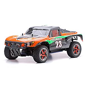 Amazon.com: 1/10 2.4Ghz Exceed RC Rally Monster Nitro Gas ...