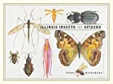 Illinois Insects and Spiders, Petra Sierwald, 0226501000