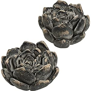 Primitives by Kathy 4.75 Inches x 2.38 Inches Cement Succulent Set Artificial Flowers Black 6