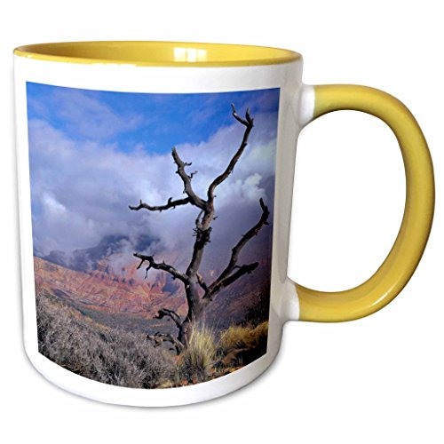 3dRose Danita Delimont - Trees - Pinyon pine snag tree, Mt Kinesava, Utah, USA - US45 SSM0426 - Scott T. Smith - 11oz Two-Tone Yellow Mug - Pinyon Tree Christmas