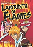 Labyrinth of Flames