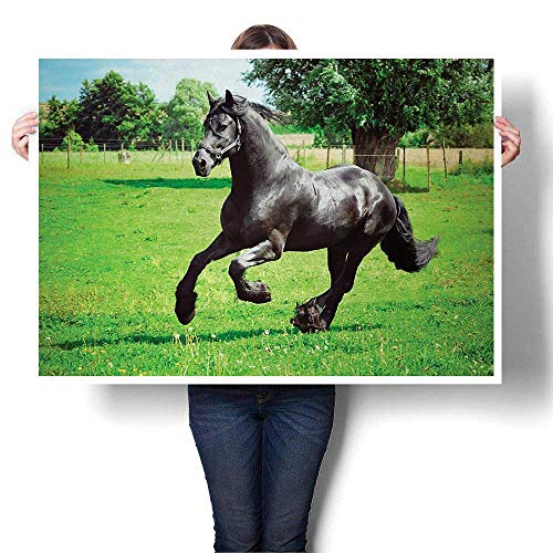 "Unpremoon Painting Wall Horses,Friesian Male Horse Masculine Driving Force of Life Power Inner Strength Symbol,Black Green for Kitchen Office Home Decoration W 32"" x L 16"""