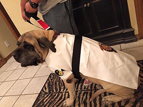 Judo Costume (New Item DogGi Jiu Jitsu Judo Karate Martial Arts Dog Gi Kimono (XX-LARGE, WHITE))
