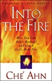 Into the Fire: How You Can Enter Renewal and Catch God's Holy Fire