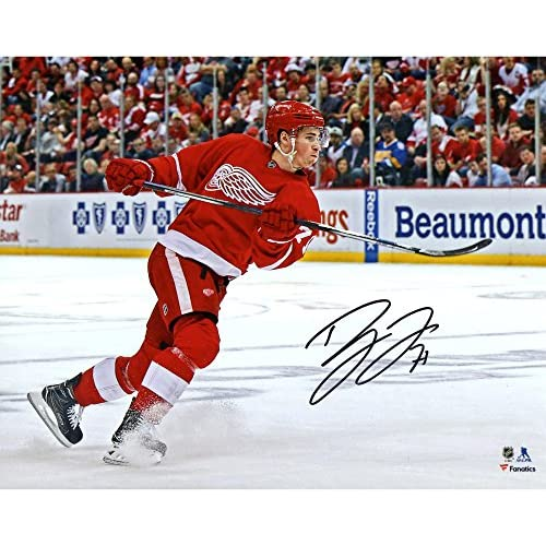 quality design 446dd eb2c1 Dylan Larkin Detroit Red Wings Autographed 8