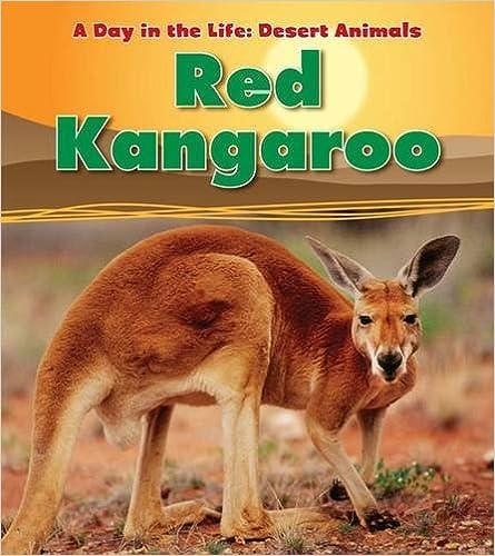 Book Red Kangaroo (Day in the Life. Desert Animals)