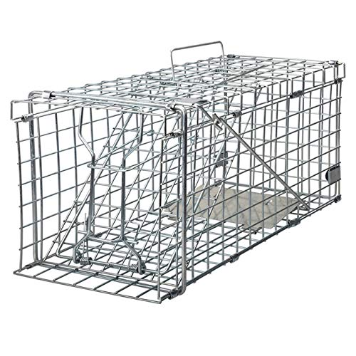 Gingbau Live Animal Trap for Squirrels
