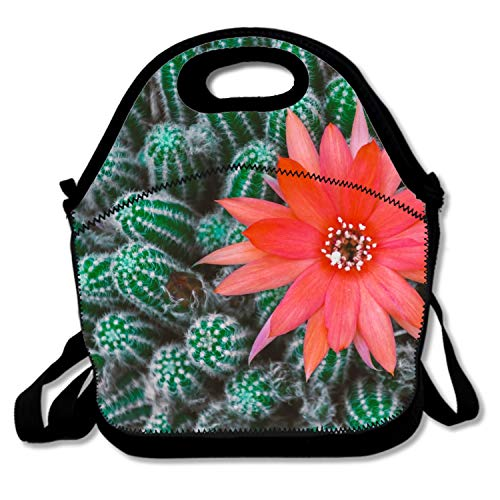 Thermos Element 5 Food Jar - Cactus And Flower Lightweight Insulated Neoprene Lunch Tote Bag