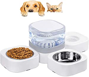 Three-in-one Automatic Pet Water Dispenser 1.8L Dog Water Bowl Dispenser with 2 Detachable Stainless Steel Feeder Bowls for Cats & Dogs