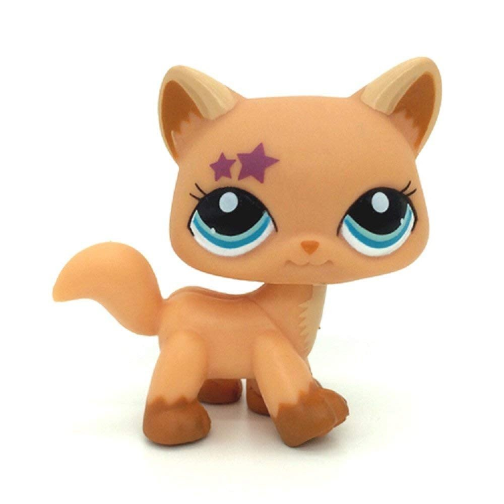 dreamsLE_Toys pet shop #2258 Cute Orange Maine Coon Walk Cat With Pink Star Blue Eyes (Brown)