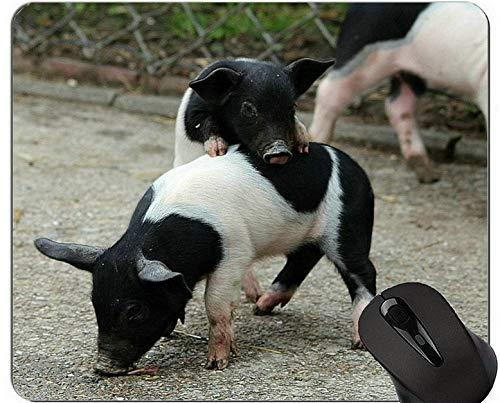 Yanteng Cojin de raton de Cerdo Animal de Granja, Cerdos de Silla de Montar alemanes Cojin de raton de Juego Piggy Gaming Lindo y Divertido