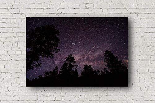 Night Sky Canvas Wall Art - Gallery Wrapped Canvas of Milky Way Over Trees with Shooting Star Planes and Satellites in Colorado Outdoor Home Decor 8x10 to 30x40