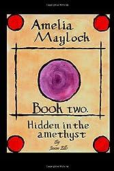 Amelia Maylock; book two. Hidden in the amethyst.