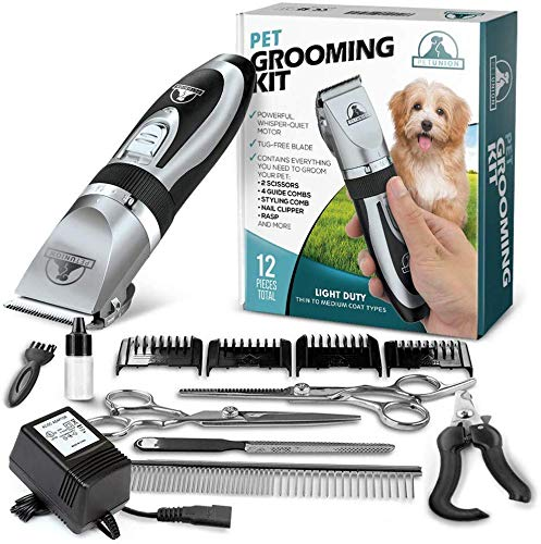 Pet Union Professional Dog Grooming Kit - Rechargeable, Cordless Pet Grooming Clippers & Complete Set of Dog Grooming Tools. Low Noise & Suitable for Dogs, Cats and Other Pets (Chrome) from Pet Union