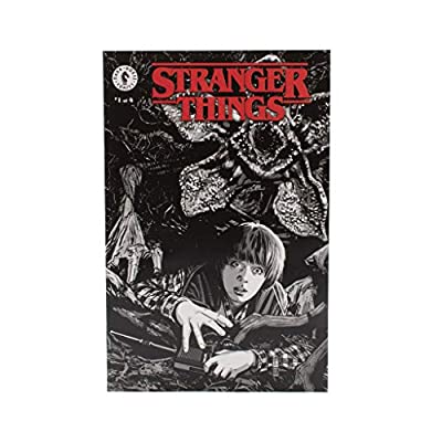Stranger Things Collector's Box - Officially Licensed - 7 Exclusive Items - Gift Box: Toys & Games